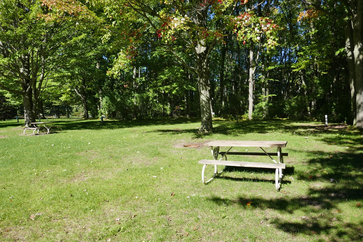 photo of picnic tables