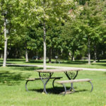 picnic tables on campsites